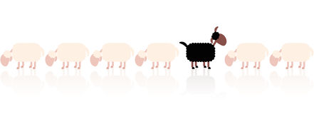 Black Sheep White Sheep Cartoon. Black sheep looking up - white sheep grazing. Cartoon vector illustration on white background Stock Image
