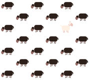 Black Sheep White Sheep Comic Stock Photos