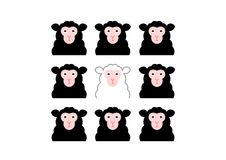 Black sheep and white sheep Stock Photos