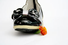 Black Shine Leather Girl Shoes . Bow Tie Stock Image