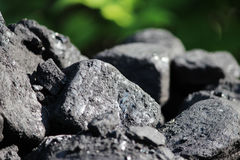 Black shiny faceted pieces Charcoal lies on a background of green grass Stock Photography