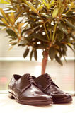 Black shiny men shoes Royalty Free Stock Photo
