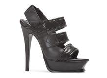 Black shoe Stock Image