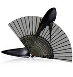 Black shoe and fan Royalty Free Stock Image
