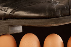 Black shoe walking on brown eggs Royalty Free Stock Photos