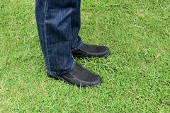 Black shoes on green grass Stock Images
