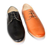 Black shoes versus Brown shoes Stock Photography