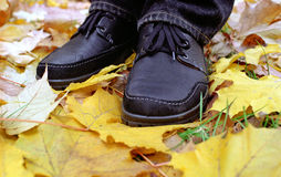 Black shoes on yellow leafs Royalty Free Stock Images