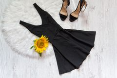 Black short and shoes on white fur sunflowers. Fashionable concept Stock Image