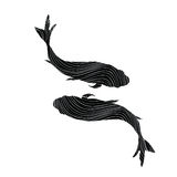 Black sign of the zodiac on white background. Pisces Zodiac sign on white background. Flying swimming fish silhouette collection in chinese style Royalty Free Stock Photos