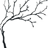 Black silhouette of a bare tree Stock Photos