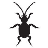 Black silhouette of a beetle on a white background. vector illustration. Hand drawing. Black silhouette of a beetle on a white background. vector illustration Stock Images