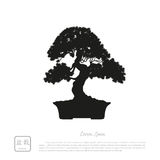 Black silhouette of a bonsai on a white background. Detailed ima Royalty Free Stock Image