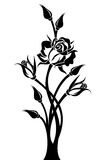 Black silhouette of branch with rose and buds. Stock Images