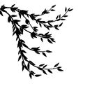 Black Silhouette Branch Tree with Leafs Royalty Free Stock Photography