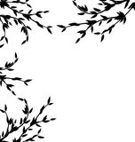Black Silhouette Branch Tree with Leafs Stock Photo