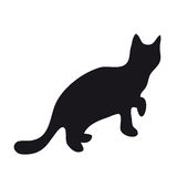 Black silhouette of cat. Black silhouette of a walking cat on white background Royalty Free Stock Photos