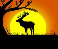 Black silhouette of deer. On background with sunset Stock Image