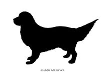 Black silhouette of dog Golden Retriever Royalty Free Stock Image
