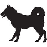 Black silhouette of a dog Stock Images