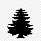 Black silhouette of fir-tree clip art isolated on transparent background. Vector illustration, icon, sign, template, pictogram for design Vector Illustration