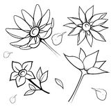 Black silhouette of flowers. Vector illustration. Royalty Free Stock Images