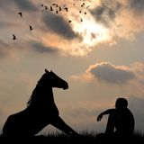 Silhouette of horse and man sitting on grass outdoor Royalty Free Stock Images