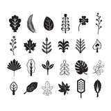 Black silhouette and line summer and tropical leaves icons set. On white background Royalty Free Stock Photo