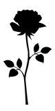 Black silhouette of rose with stem. Vector illustrations. Stock Image
