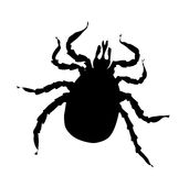 Black silhouette of tick Stock Photography