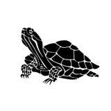 Black silhouette of tortoise. Illustration of turtle. Royalty Free Stock Image
