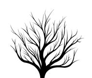 Black silhouette of a tree on a white background. Illustration Royalty Free Stock Photo