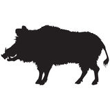 Black silhouette of a wild boar Stock Photos