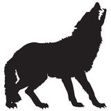 Black silhouette of a wolf Stock Images