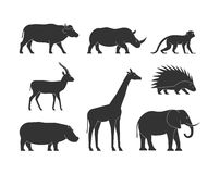 Black silhouettes african animals. Vector figure african animals. Black silhouettes african animals. Black figure african animals. Icon buffalo, rhino, monkey Stock Image