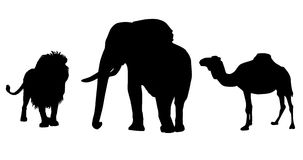 Black silhouettes of African wildlife Royalty Free Stock Photography
