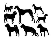 Black silhouettes of dogs on a white background Royalty Free Stock Photo