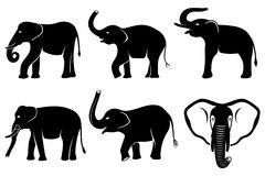 Black silhouettes of elephants Stock Image