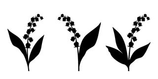 Black silhouettes of lily of the valley flowers. Vector illustration. Royalty Free Stock Photography