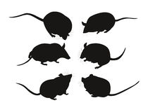 Black silhouettes of mice. Set of six black silhouettes mice. Vector illustration vector illustration
