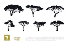 Free Black Silhouettes Of African Trees On White Background. Isolated Image Of Savannah Nature. Forest Landscape Of Africa Stock Photos - 153281713