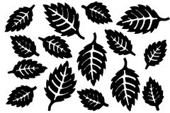 Black silhouettes of pointed leaves. Isolated on white background