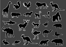 Black Silhouettes of Wild and Farm Animals Vector Stock Photos