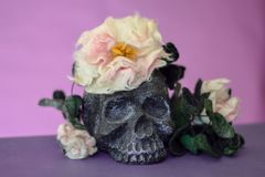 Black skull with flowers and leaves made of wool. Black skull with flowers and leaves on top and around it. Violet background royalty free stock image