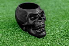 Black skull with green grass background royalty free stock photos