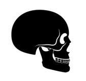 Black skull Royalty Free Stock Photography