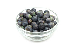Black sloe berries in a glass bowl Royalty Free Stock Image
