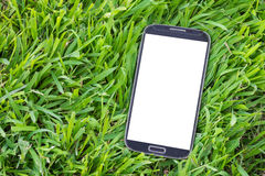 Black smart phone with isolated screen on grass.  Stock Photos