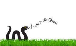 Black Snake in the Grass Royalty Free Stock Images