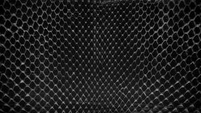 Black snake skin, abstrat leather texture for background. Royalty Free Stock Photo